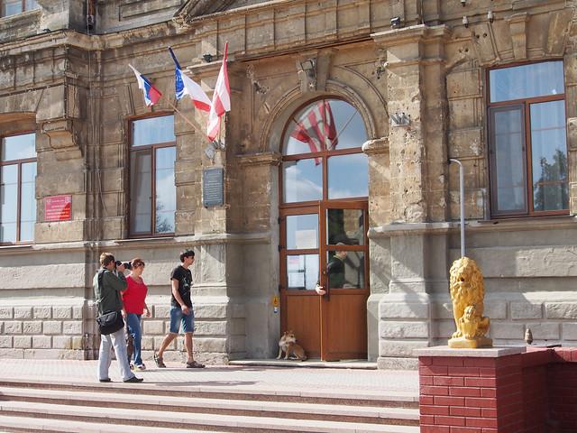 Kerch, Sep 14 2014, elections. Керчь, корреспондент фотографует суперочередь у избирательного участка в гимназии Короленко.