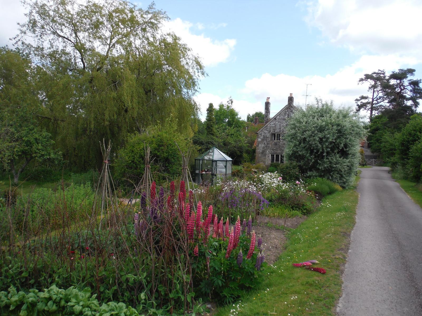 Garden at Tisbury Mill SWC Walk 249 Tisbury Circular via Dinton and Fovant