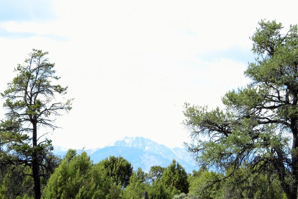 Falfa Colorado Tripcarta