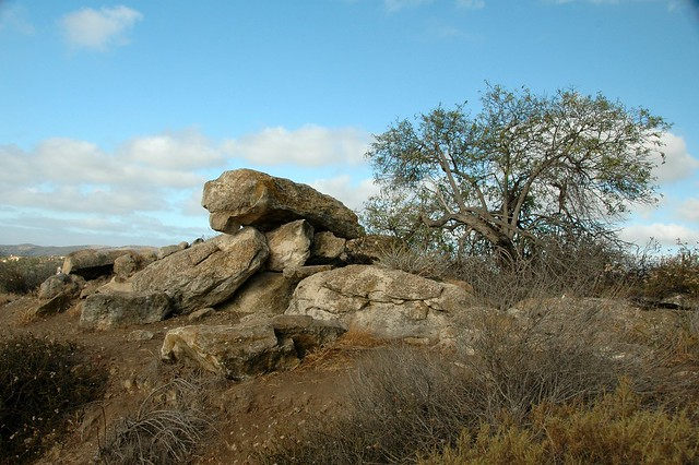 Rocks Along the Quail Hill Trail