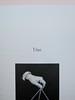 Ortografia della neve, di Francesco Balsamo. incertieditori 2010. Progetto grafico di officina delle immagini. L'indicazione del capitolo: un numero scritto in lettere e, più in basso, ill. b/n: a pag. 11 (part.), 2
