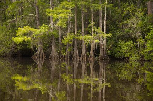 Byrnes Lake, Alabama {Explore}