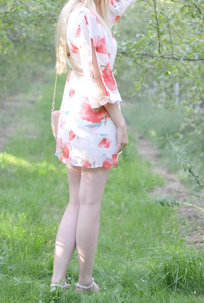 Apfelbaumallee Eugli(1)