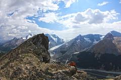 Wilcox Pass Hike - Jasper, AB