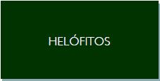 helófitos