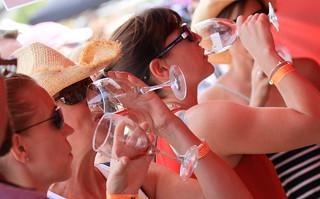 2014 Castle Rock WineFest