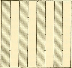 """Image from page 331 of """"Forest mensuration"""" (1921)"""