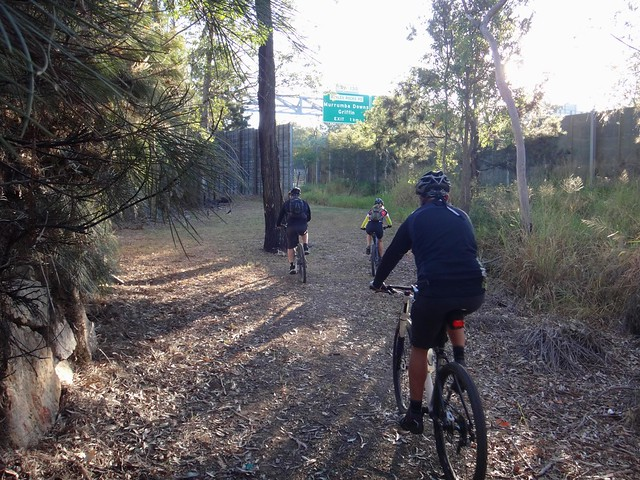 MTB by the Highway
