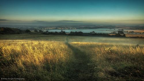morning blue sky grass sunshine landscape golden southoxfordshire whittenhamclumps