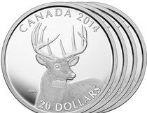 White-Tailed deer coin