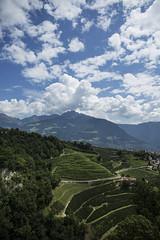 Tirolo 2014
