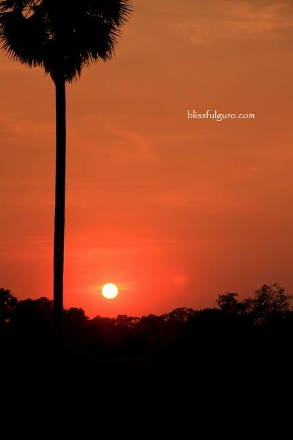 Siem Reap Cambodia Angkor Wat Sunset