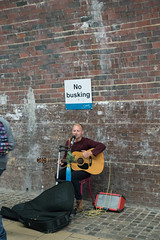 plucked string instruments, wall, street artist, street,