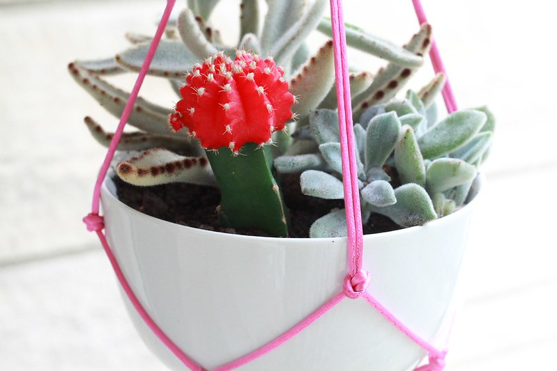 how to make a diy plant hanger tutorial via Kristina J blog