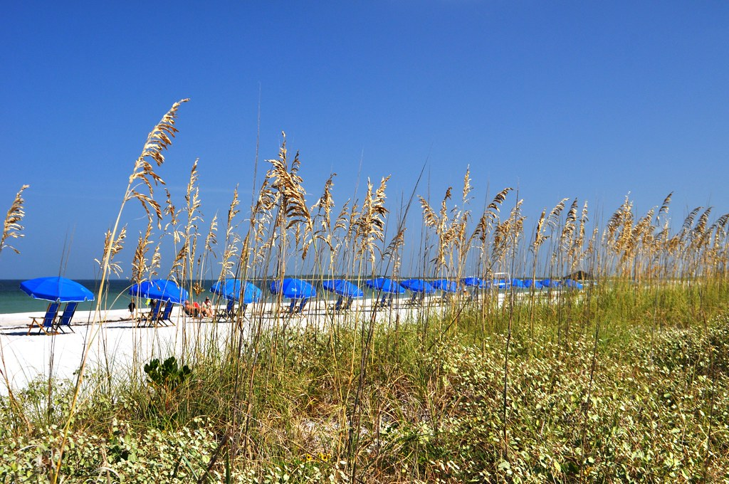Umbrellas and Sea Oats - Caladesi Island State Park, Dunedin, Fla., Aug. 31, 2014