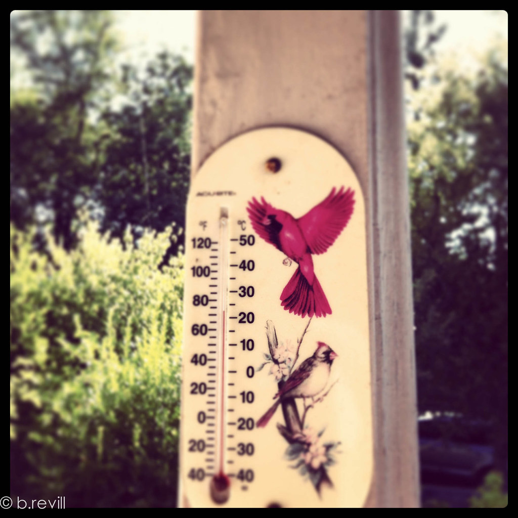 another thermometer