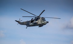 black hawk(0.0), mil mi-24(0.0), aircraft(1.0), aviation(1.0), helicopter rotor(1.0), helicopter(1.0), vehicle(1.0), military helicopter(1.0), flight(1.0), air force(1.0), air show(1.0),