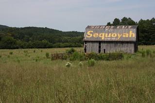 Old Barn Advertising Sequoyah Caverns / P2013-0902D003