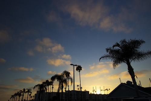 california blue sunset cloud beach beautiful clouds marina canon view palm palmtree swag 1022mm goldenhour
