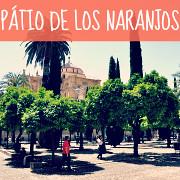 http://hojeconhecemos.blogspot.com/2012/06/do-patio-de-los-naranjos-catedral.html