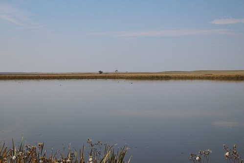 Benton Lake Wildlife Refuge (23)