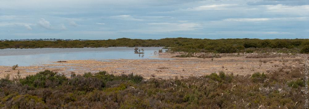 Wallaroo South Australia-6