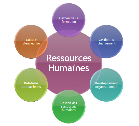 human resources strategic direction essay Essay paper on strategic hr management appreciation of the human factor as a vital/strategic resource the correlation in an integrated manner.