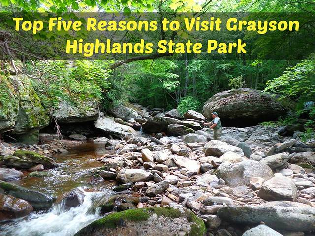 Top five reasons to visit Grayson Highlands State Park - Big Wilson Creek is a trout fisherman's dream