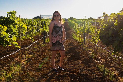 Grapevine Wine Tours-7.jpg
