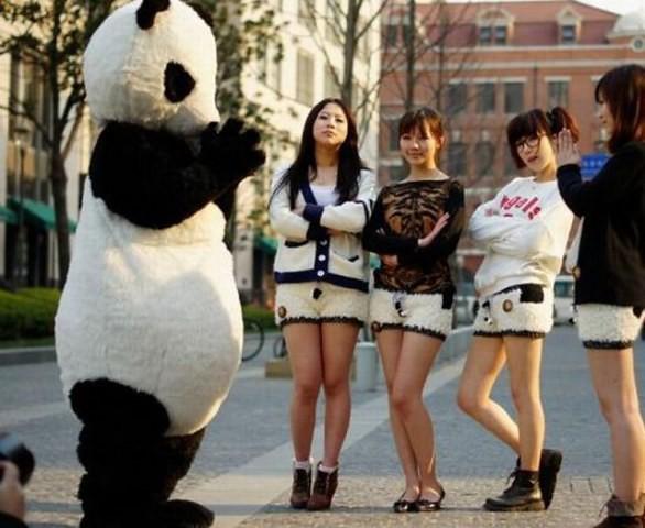 moda_panda_cina3