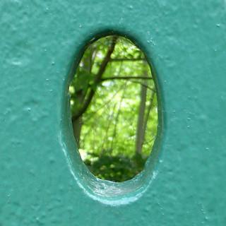 green elipse