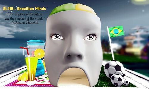 Brazilian Minds - SL11B