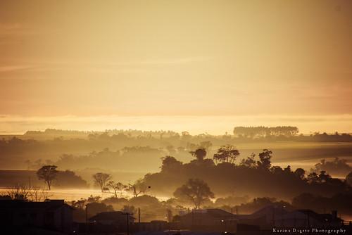 paraguay santarita