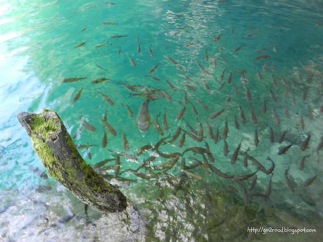 Хорватские Плитвицкие озера