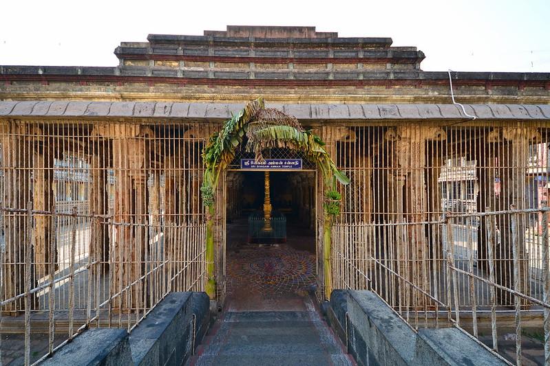 India - Tamil Nadu - Chidambaram - Nataraja Temple - 19