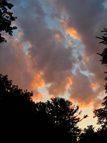 bluesky orangetinted eveningclouds putnamcounty treesilhouettes carmelny summer2014