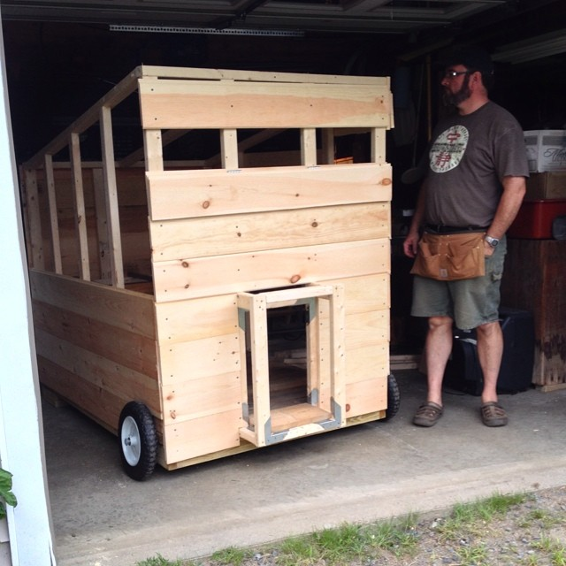 Alex's latest project - a moveable coop for our 14 chickens. @bradstreetfarmer