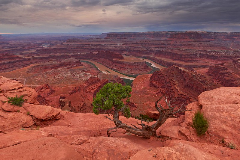 Dead Horse Point - Dead Horse State Park