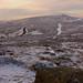 1011 - Climbing Dartmoor 0008