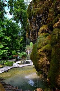 Le jardin des plantes pétrifiantes à la Sône, Isère 0027