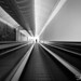 """""""The light in the end of the tunnel"""" by Shalev C"""