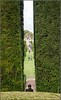 Topiary /2