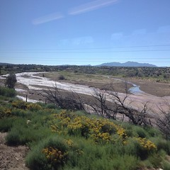 New Mexico, you so purdy! Taken from the NM Rail Runner, north of the Santa Domingo station.
