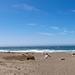Mattole Beach. by Uhlume