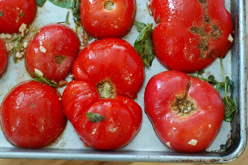 A tray of heirloom tomatoes with garlic and herbs heading into the oven by Eve Fox, the Garden of Eating, copyright 2014