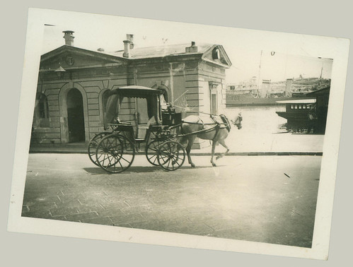 Horse and Carriage at waterfront