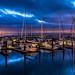 Pier 39 Marina {Explored 1-Sept-2014 #40} by Matthew Kowalski