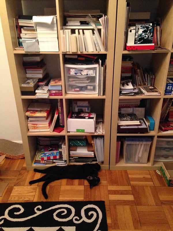 Oberon likes my stationery shelves