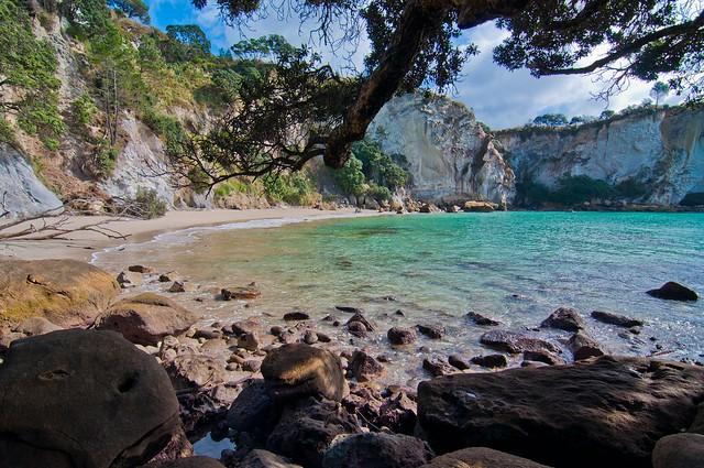 Stingray Bay, Coromandel