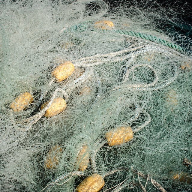 Fischernetz / fishing net